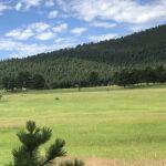 Hiking Trails in Colorado Elk Meadow Trail