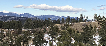 Mount Falcon Trail