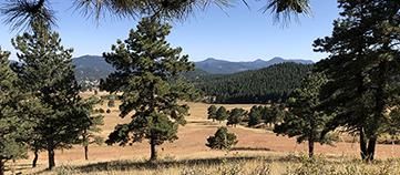 Elk Meadow Trail