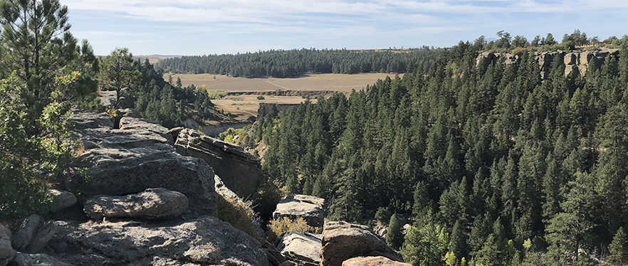 Castlewood Canyon State Park | Inner Canyon Loop Trail