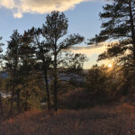 Hiking Trails in Colorado | Dawson Butte Ranch Open Space Trail