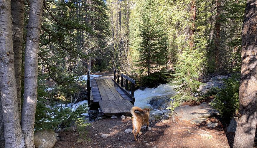 Bridge over Creek with Snow Melt Runoff