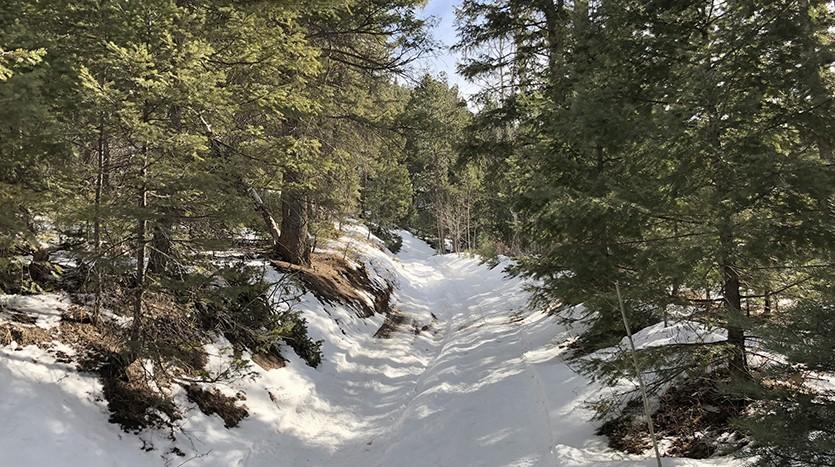 Chautauqua Mountain Trail | Climbing up the Mountain