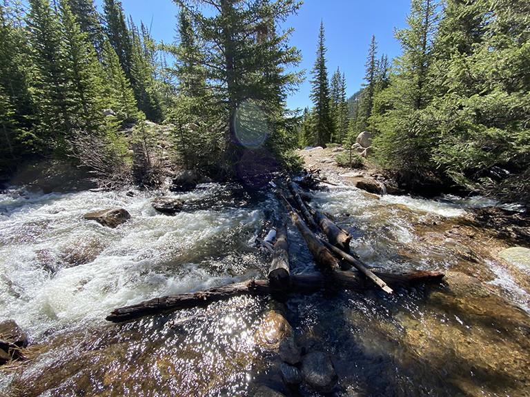 Creek Crossing on Logs