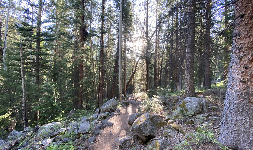 Weller Lake Trail Sunrise